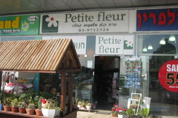 פטיט פלור איירפורט סיטי, פרחים
