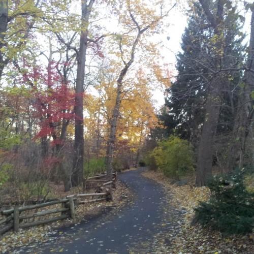 גן החיות נמצא בסביבה יפיפיה במיוחד בסתיו, סמוך אליו זורם נהר בגודל הירדן שלנו