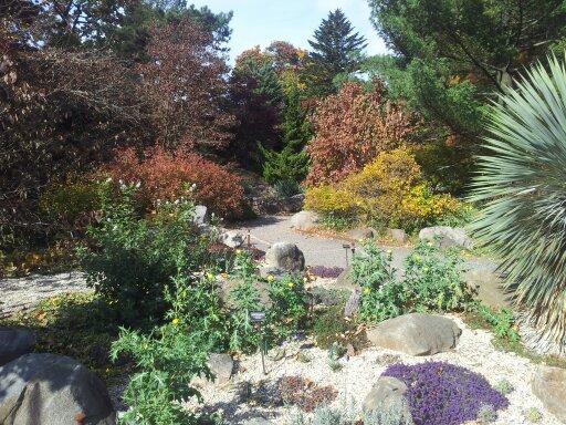 גן הסלעים