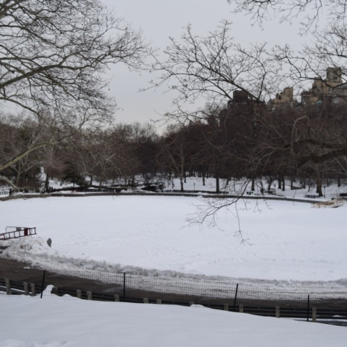 סנטרל פארק בחורף