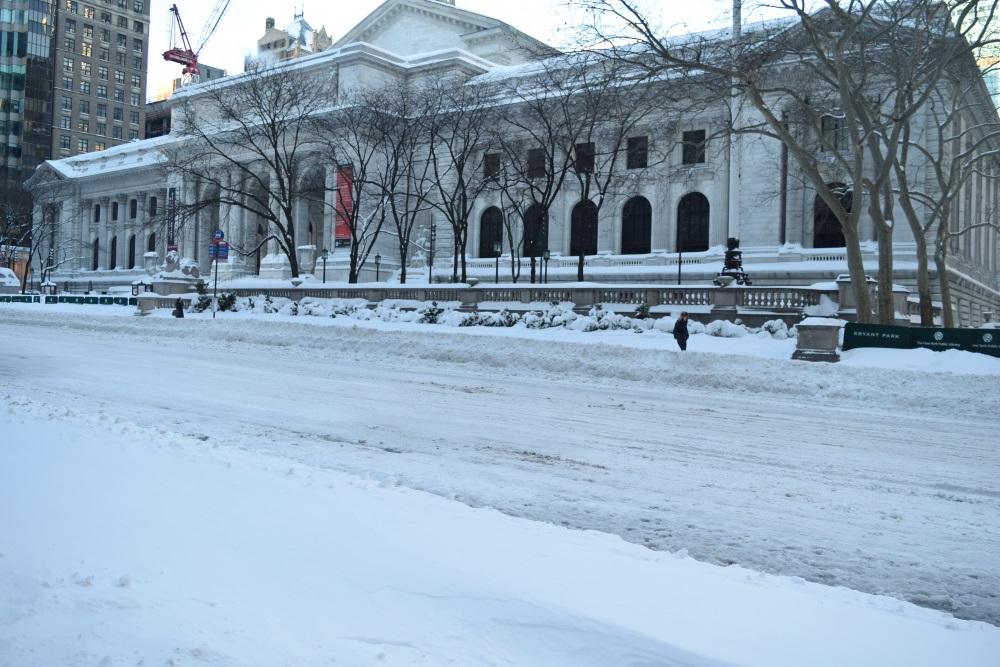 snow-storm-nyc-public-laibery