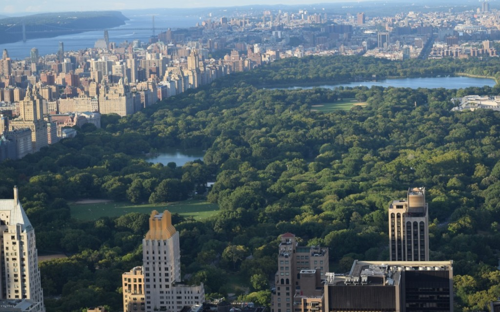 top-of-the-rock-view-central-park-6
