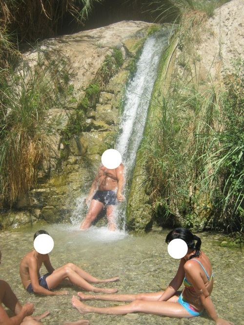 המפל והבריכה הראשונה בנחל דוד