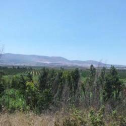 הנוף סביב שמורת נחל שניר