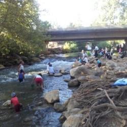 אנשים רוחצים ועושים פיקניק מתחת לגשר