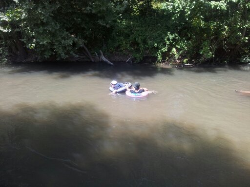 אבובים על הבניאס (המים קרים גם בקיץ)