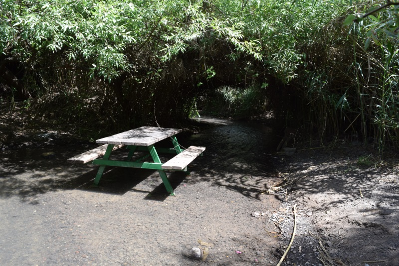 שולחנות פיקניק בתוך המים וליידם פארק הירדן