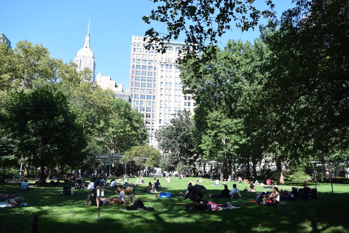 מדיסון פארק ניו יורק