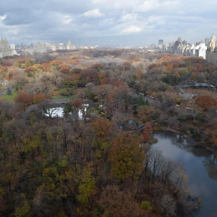 הנוף אל סנטרל פארק מקומה 19 מלון פארק ליין ניו יורק