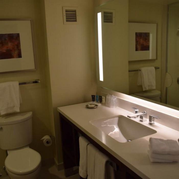 חדר המקלחת מלון קראון פלאזה ניו יורק