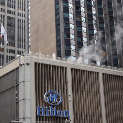 אתם רואים את העשון? אתם לא רוצים אותו ליד החלון שלכם מלון הילטון מידטאון ניו יורק