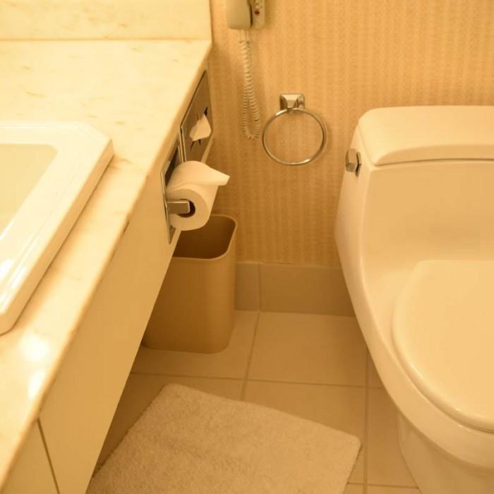 חדר האמבטיה מלון פארק ליין ניו יורק