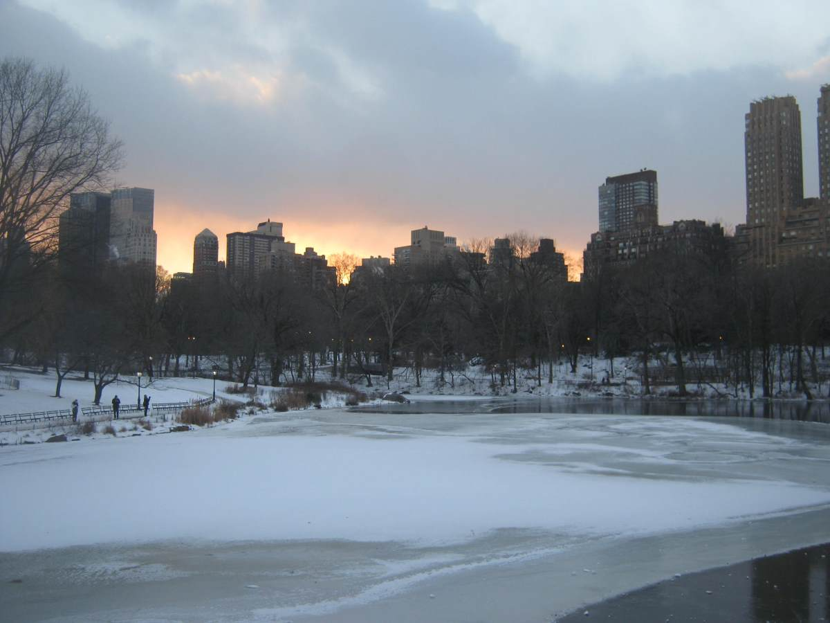 central-park-nyc-winter-12