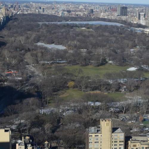 הנוף לסנטרל פארק מקומה 59 מלון רזידנס אין סנטרל פארק ניו יורק