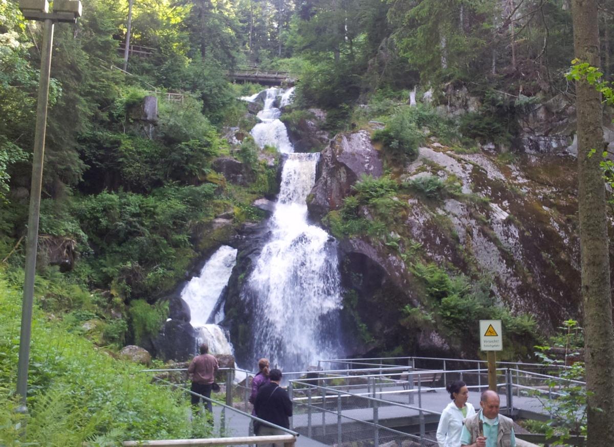 מפלי טריברג היער השחור
