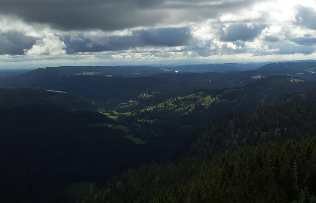 הנוף מהר פלדברג היער השחור