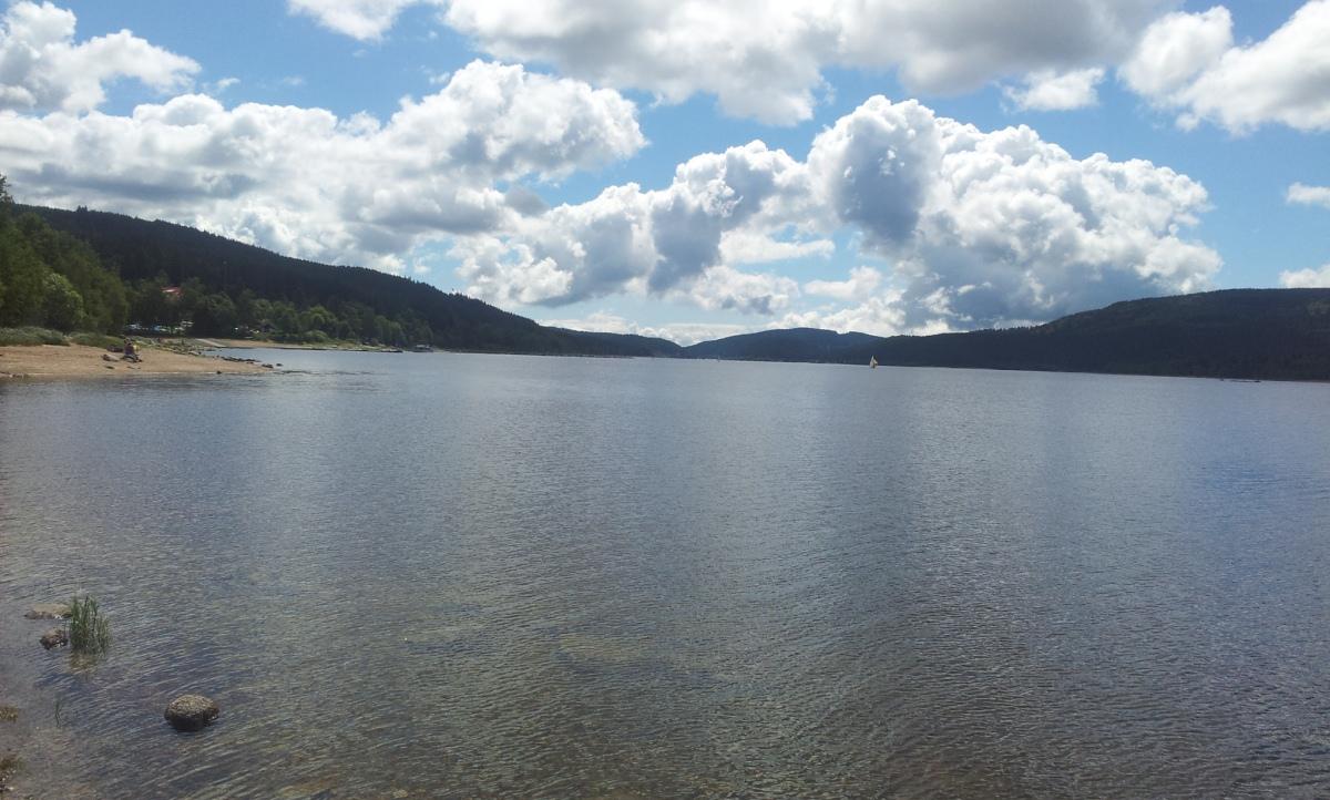 אגם שלוכזי היער השחור
