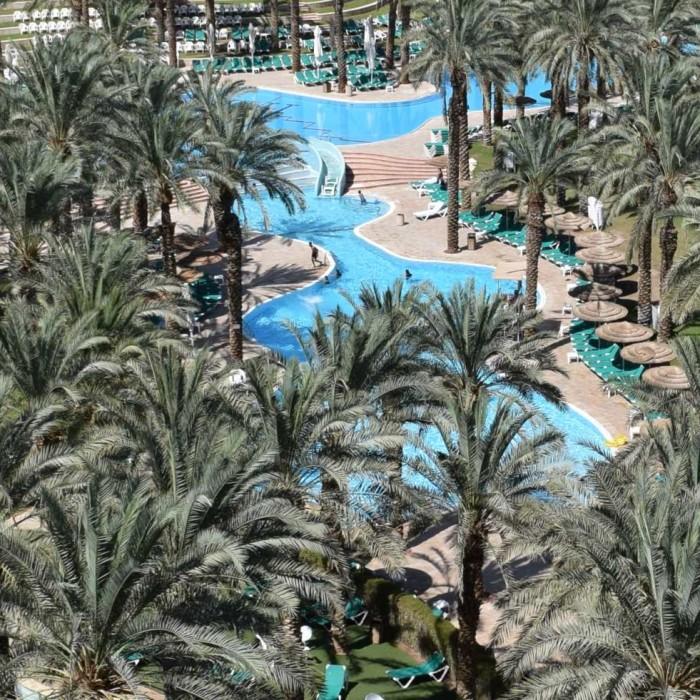 הבריכה מלון דיוויד ים המלח