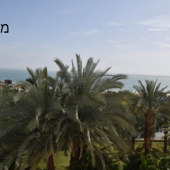 נוף מהחדר מלון ישרוטל גנים ים המלח