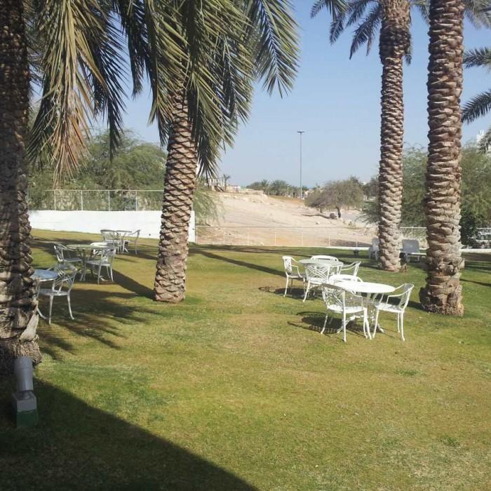 דשא סמוך לבריכה מלון ישרוטל גנים ים המלח