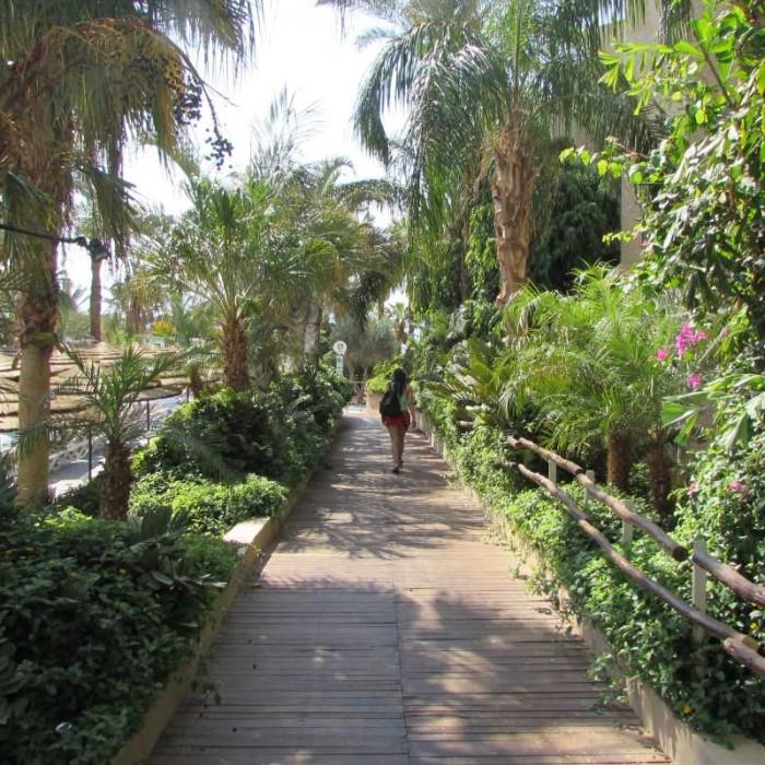 שביל במתחם הבריכה מלון יו קןרל ביץ אילת