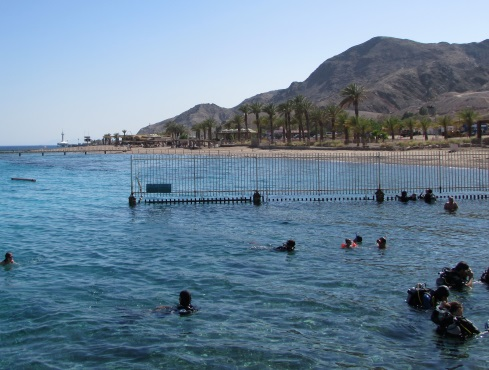 tuv-south-beach-hotels-eilat