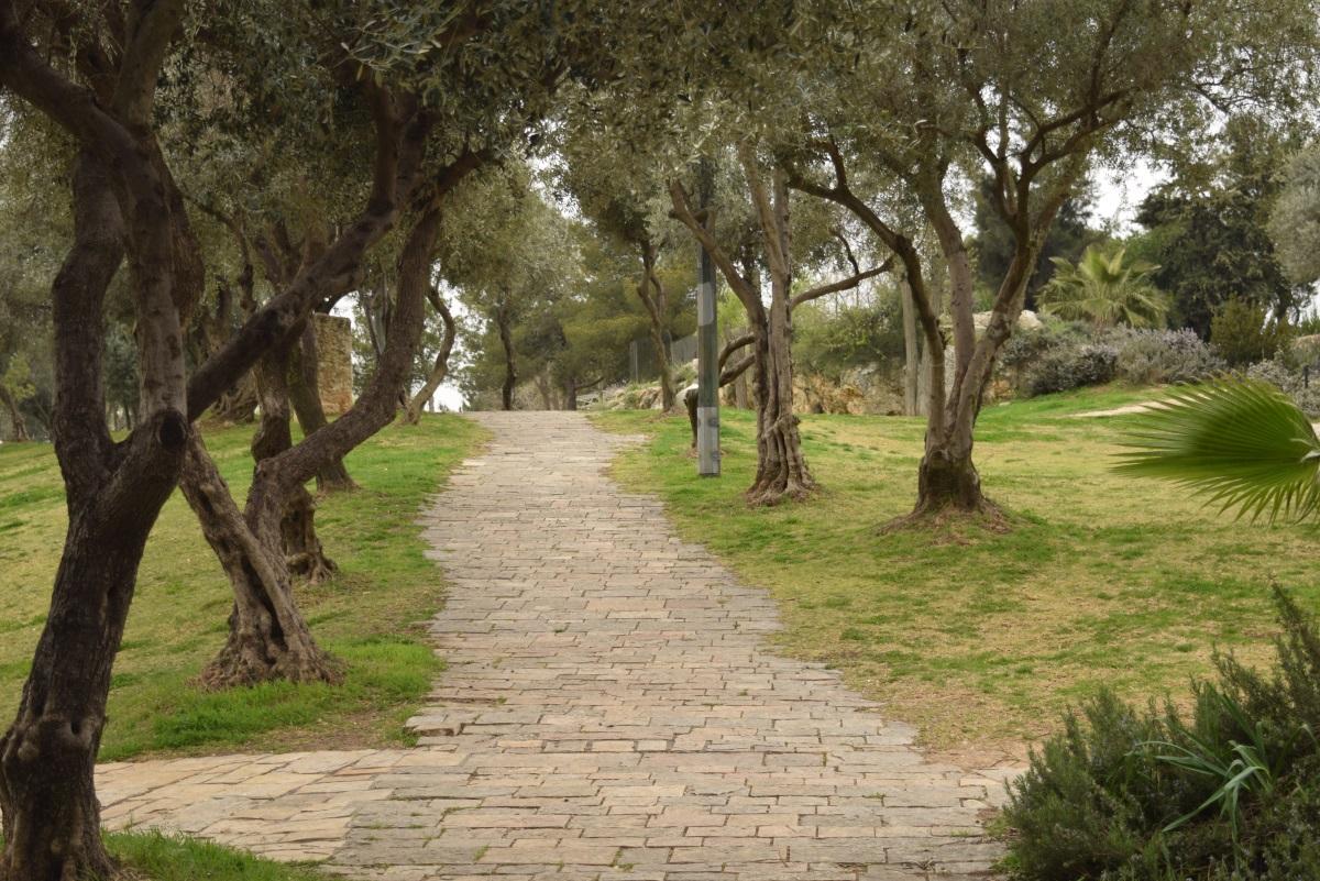 הטיילת שמאחורי מלון המלך דוד וצופה לעיר העתיקה