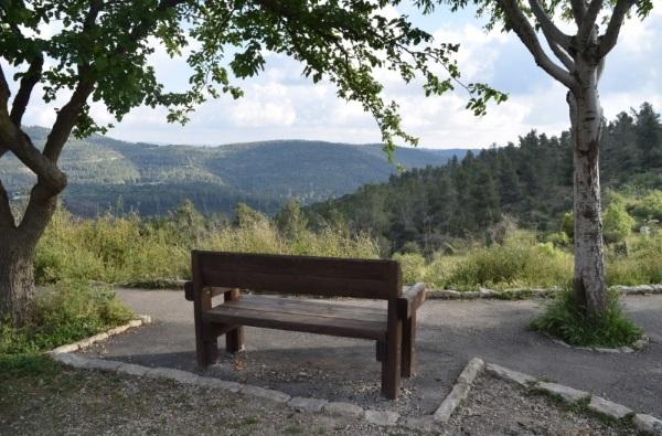 פארק ונוף מלמעלה