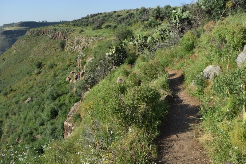 מסלול ההליכה צמוד למצוק נחל אל על המפל הלבן
