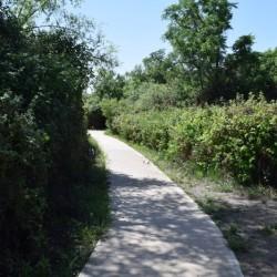 השביל המקביל למסלול הרטוב אליו ניתן להיכנס ולצאת מג'רסה