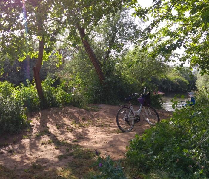 מטיילים עם אופניים צמוד לנחלים נהנים מהירדן