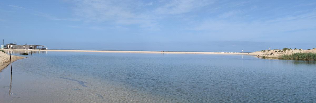 חוף זיקים