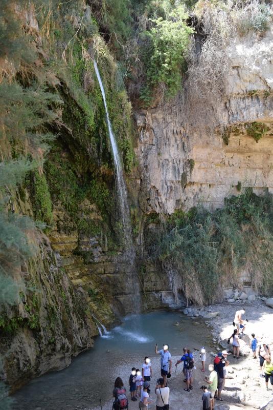 מפל דוד, המפל הגבוה אבל ללא כניסה למים נחל דוד