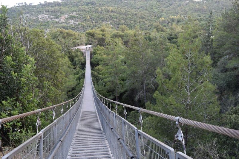 Suspension-bridge-nesher-2