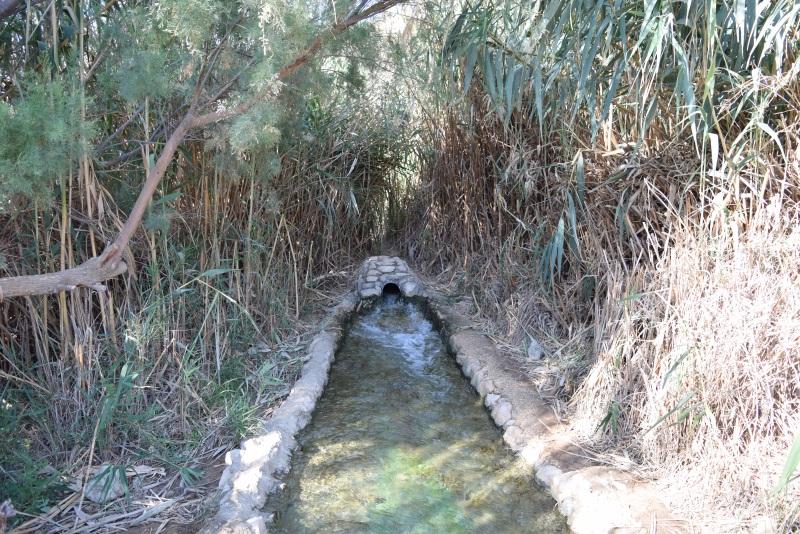 עינות צוקים - מים זורמים וירוק בכול מקום