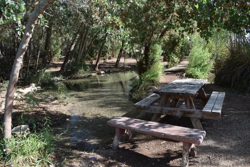 בריכת הצפצפות - מקום נהדר לפיקניק עינות צוקים