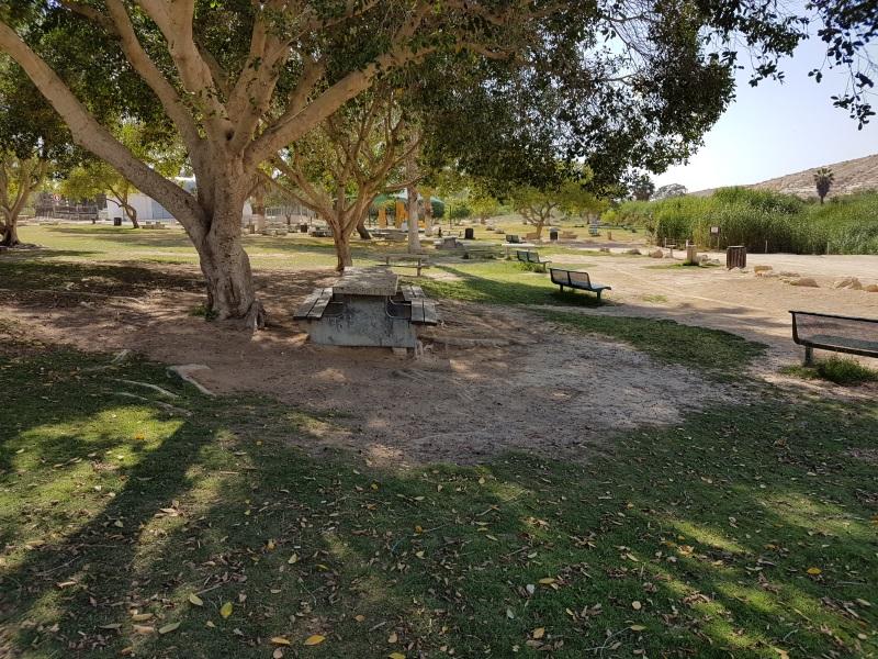 פיקניק בפארק גולדה