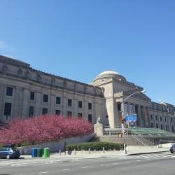מוזיאון ברוקלין
