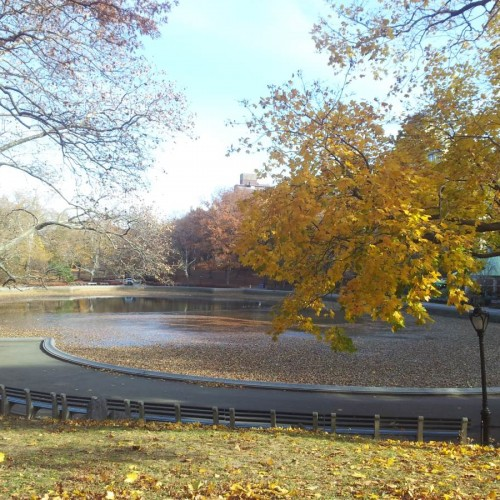 סנטרל פארק בסתיו