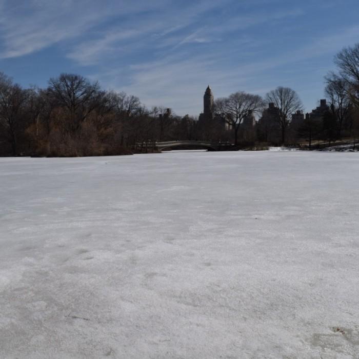 האגם קופא בסנטרל פארק בחורף