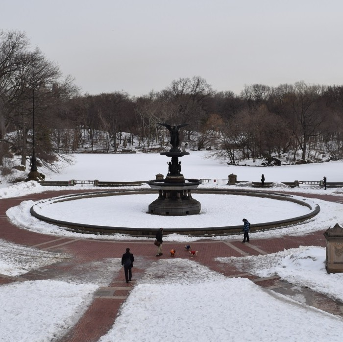 כיכר מרכזית בסנטרל פארק בחורף