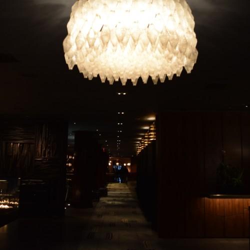 גוף התאורה שנמצא בחזית הצילום גורם להחשכת הצילום
