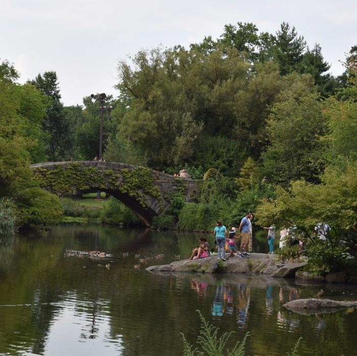 סנטרל פארק בקיץ
