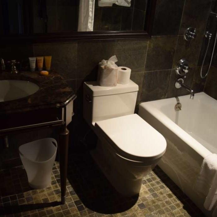 האמבטיה מלון בלוודר ניו יורק