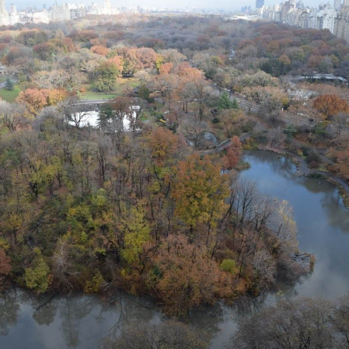 נוף אל הסנטרל פארק מקומה 19 מלון פארק ליין ניו יורק