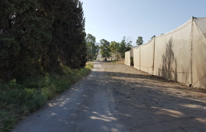 כך נראה שביל הכניסה מכביש סובב כינרת